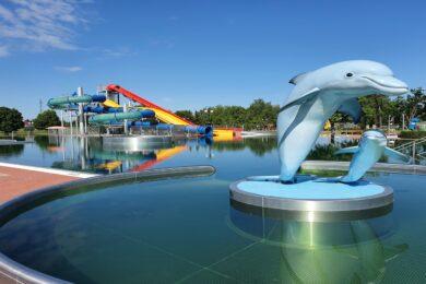 basen, delfin